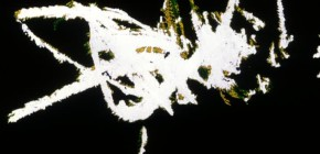 Chinese series, Stan Brakhage