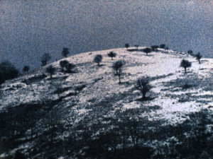 colline autrement la molussie - nicolas rey