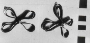 Apéro Lab Labo : Autoréplication, microfilm et imprimante 3D