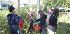 Exposcience au Jardin C : Ateliers de découverte