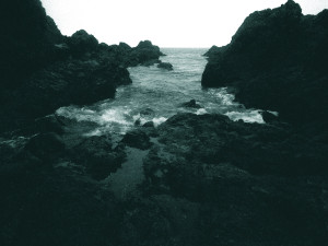intertidal - Alex MacKenzie_STILL1