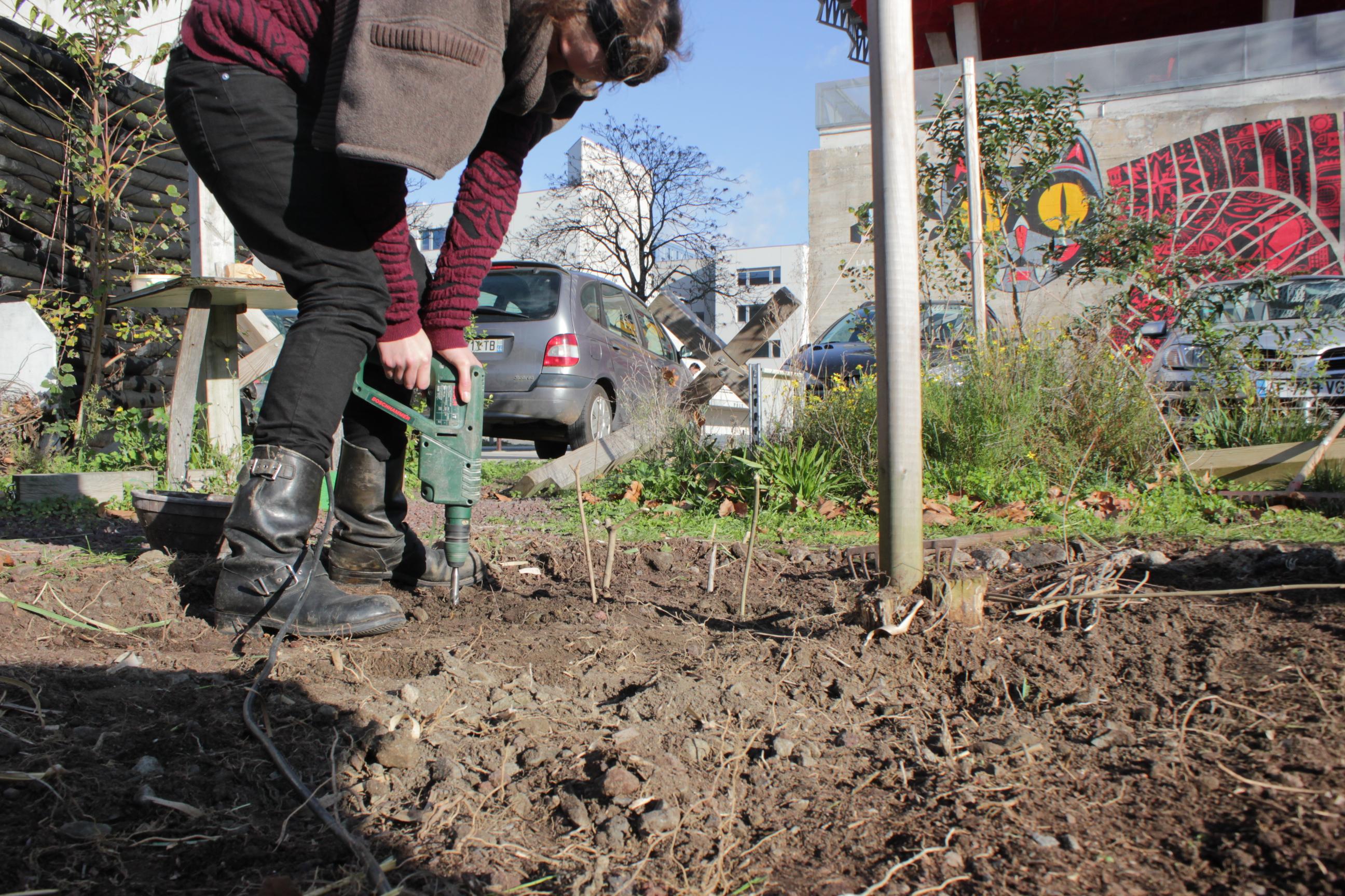 Mire chantier d hiver au jardin c for Hiver au jardin