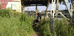 Photos de la Carte Blanche à O.L.A. et les Potagers Natures au Jardin C