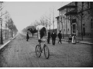 17-bicycliste