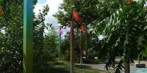 MBDTCurators_FloraMoscovici_jardinC_saisonspartagees_1