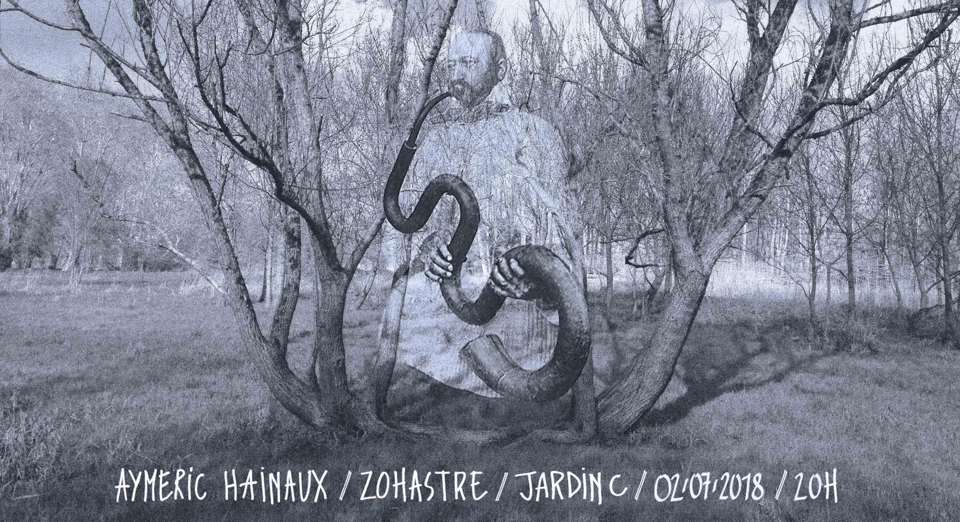 Aymeric Hainaux • Zohastre