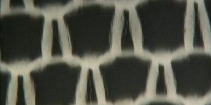 Atelier rayogramme sur film 16 mm